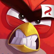 Angry Birds Under Pigstruction icon