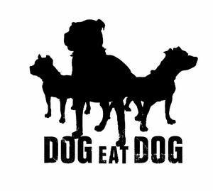 Dog Eat Dog (USA)-Logo.jpg