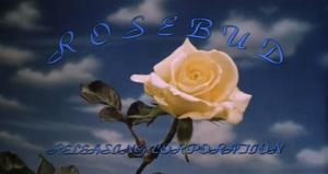 Rosebud Releasing Corporation.png