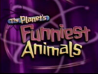 The Planet's Funniest Animals.jpg