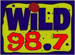Wild 98.7 WLLD.jpg