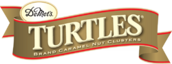 TURTLES LOGO.png