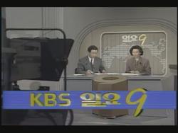 KBS 9 o'clock News Sunday Edition 1991.png