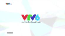 VTV6 (2020)(1).png