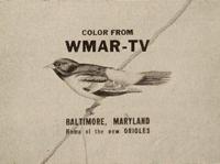 Wmar53-3