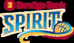 Team logo-bendigo.png