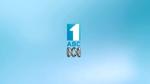 ABC2012IDMissFisher1