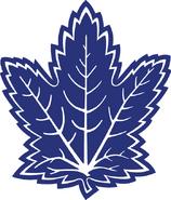 Leafs Alternate logo