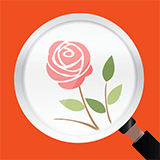 Icon Flower Recognition-1.png