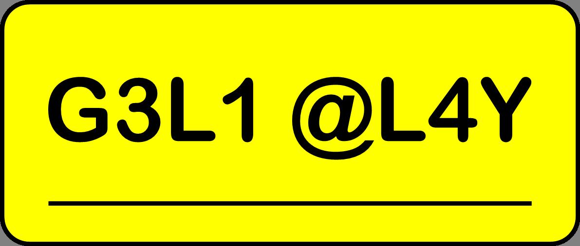 G3L1 @L4Y