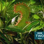 BBC2WalesPredator2015.jpg