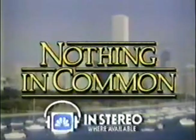 Nothing in Common (TV series)