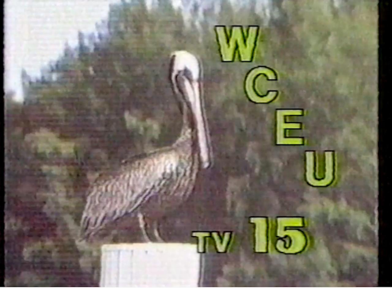 WDSC-TV