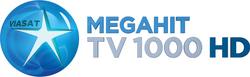 TV1000 Megahit.png