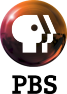 PBS 2009 logo vertical (Orange)
