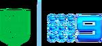 NRL On Nine Logo (2020)