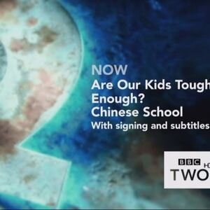 BBC2NetworkSZCopper2015.jpg