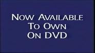 Walt Disney Studios Home Entertainment Buena Vista Now Available to Own on DVD