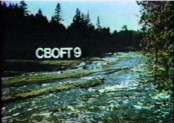 Cboft.png