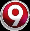 LogoCanalNueve2015-2017