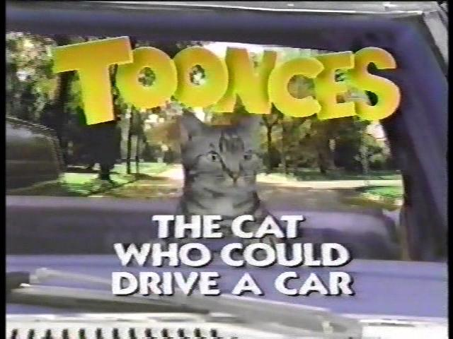 Toonces, the Cat Who Could Drive a Car