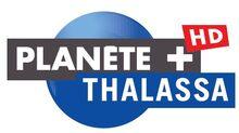 PLANETE+ THALASSA HD.jpg