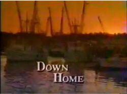 Down home-show.jpg