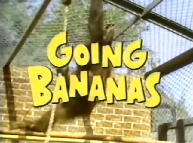 Going Bananas