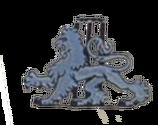England Cricket old logo.png