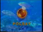 Polsat 1999-2000 summer ident