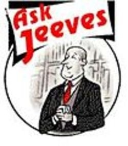 Ask Jeeves (US)