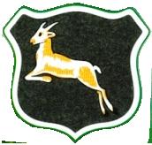 Springboks 1906-36.png