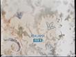 TVP1 Reklama 2004-2006 (1)
