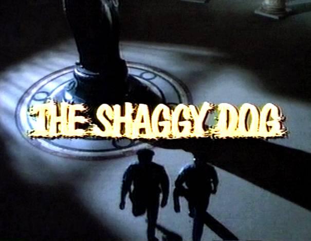 The Shaggy Dog (1994)