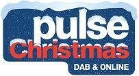 PULSE CHRISTMAS (2014).jpg