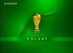 Polsat2002MS