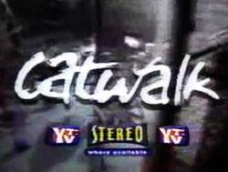 Catwalkseriesintro.jpg