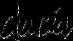 Daria text logo.png