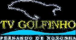TV Golfinho 1998.png