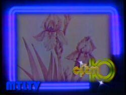 CFTM-TV ID 1978.jpg
