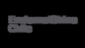 2 line EndemolShine Chile logotype rgb cg11.png