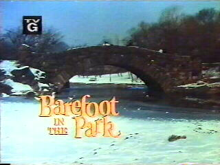 Barefoot in the Park (1970 sitcom)