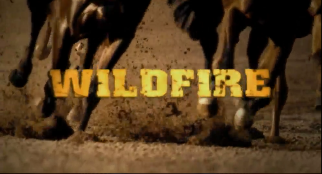 Wildfire (TV series)
