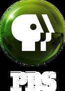 PBS 2009 logo vertical (Green, White text)