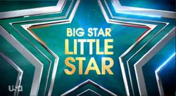 Big Star Little Star.png