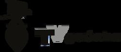 Tv gaucha 1962.png