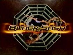Black Sash Title.jpg