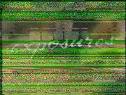 X1080-MtP.jpg