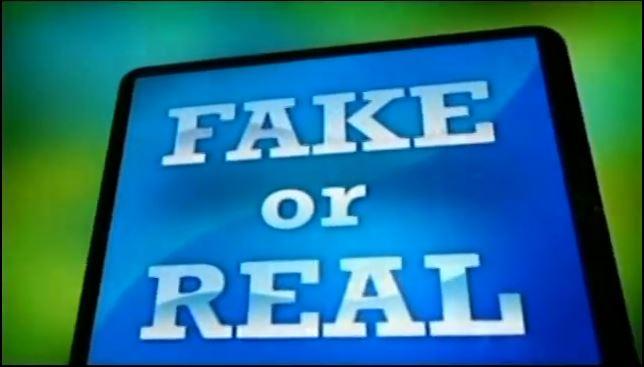 Fake or Real