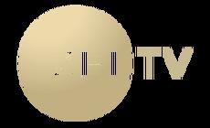 Zee TV Russia.png